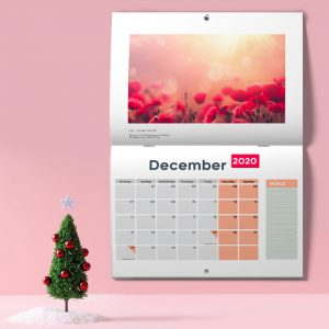 holiday-december-calendar-2020-pinned-to-pink-wall