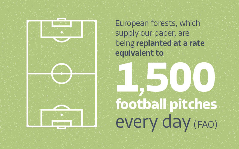 1,500-FOOTBALL-PITCHES-REPLANTED-EVERYDAY-PRINT